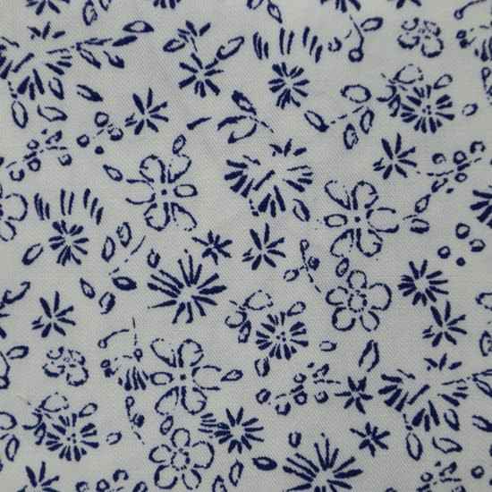 317 flores marino fondo blanco